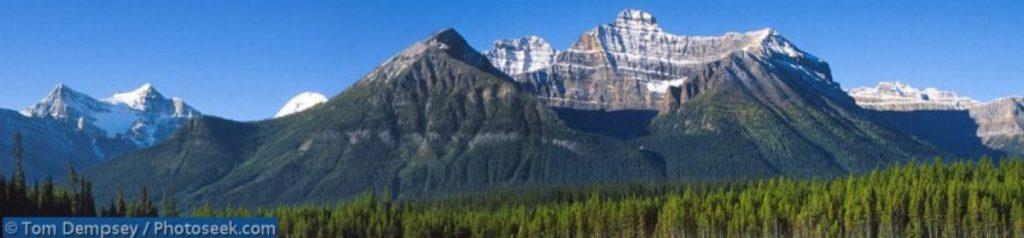 Image of the the landscape of mountains and forests in Banff.