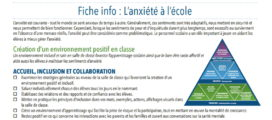 Image of French info sheet