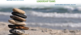 Youth Suicide Prevention at School: A Resource for SMH Leadership Teams
